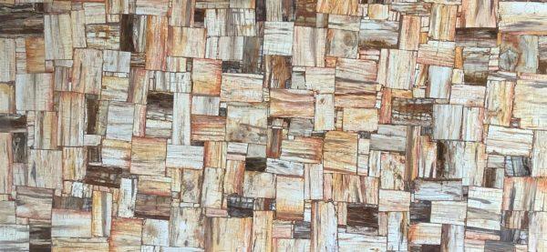 Petrified Wood Retro 1