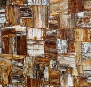 Petrified Wood Retro Opaque